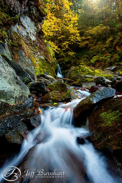 Oregon in Fall