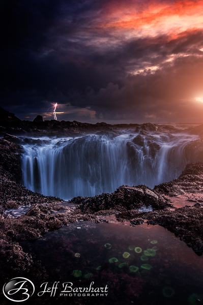 Thor's Well and Sea Anemones